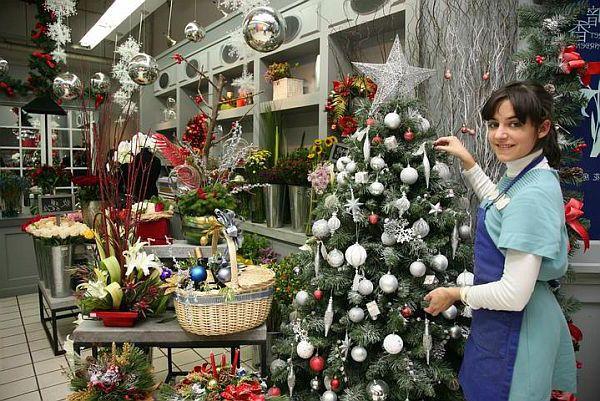 Выбор новогодней елки