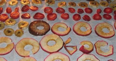Сушка фруктов в сушилке