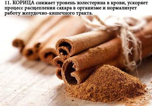 zhiroszhigateli_11