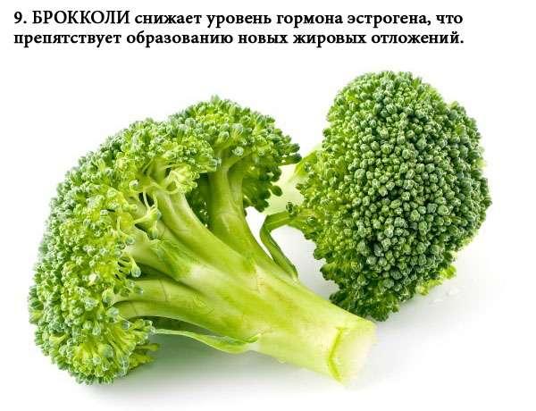 zhiroszhigateli_9